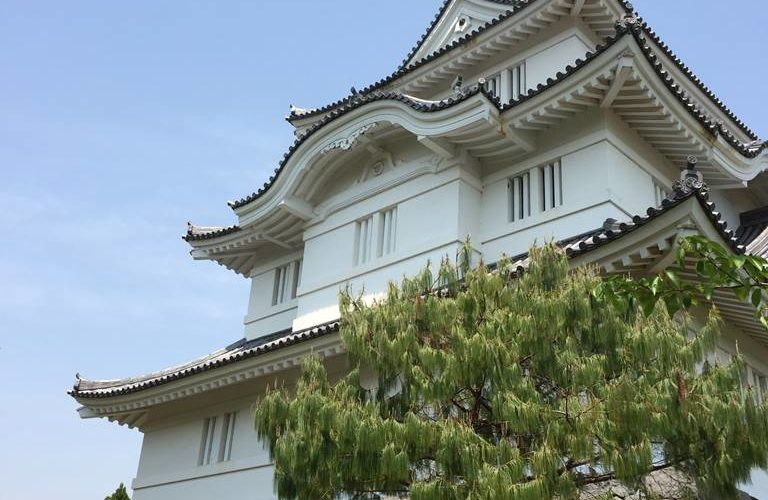 Japanese Castle in Chiba