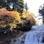 養老渓谷の紅葉